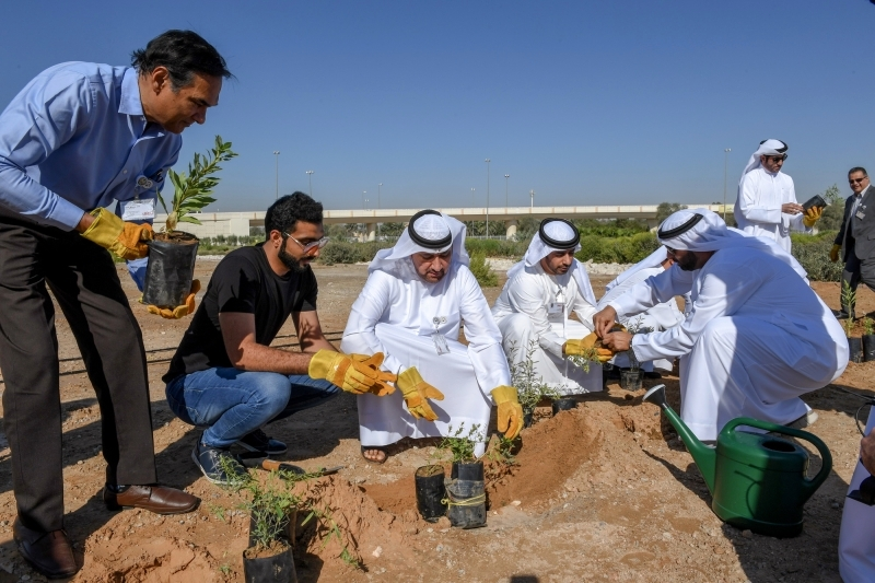 غرس 100 شجرة محلية في جامعة الإمارات